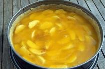 Apfelweinpudding